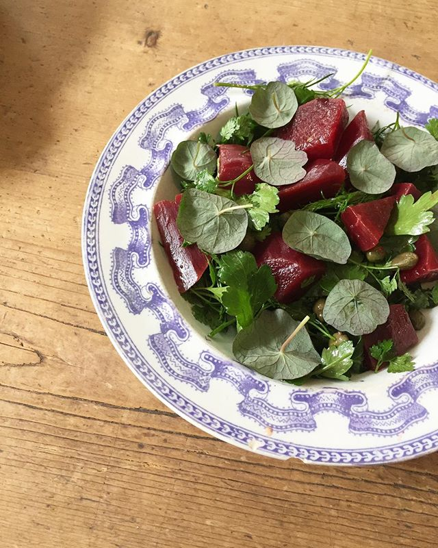 Beetroot salad with capers & nasturtium 🌱 now on the menu 🍃