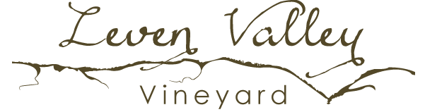 Leven Valley Vineyard Logo
