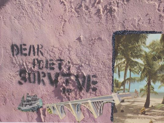 """dear poet survive"" by Kelly Jones"