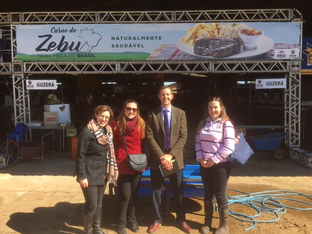 In front of the Zebu Cattle Lines L-R Fernanda Silva & Juliana Alves (DIT), Richard Saunders & Ruth Perry
