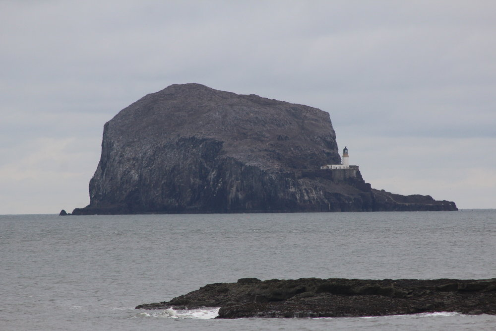 The Bass Rock, viewed from North Berwick