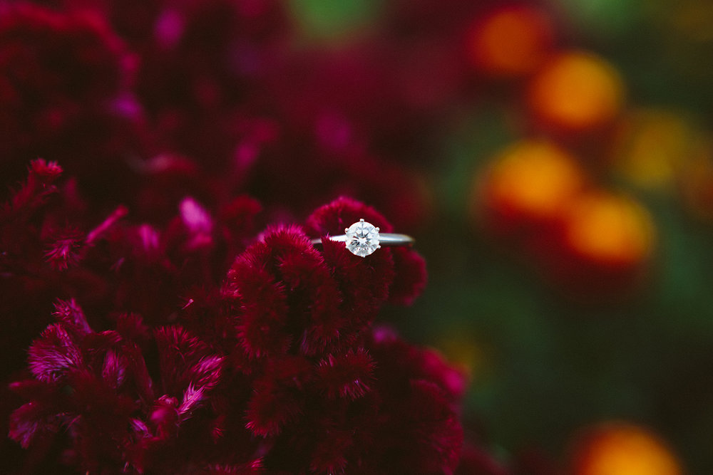 ring photography.jpg