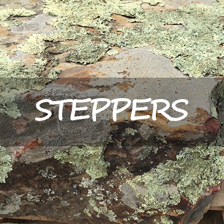 Steppers-CTA.jpg