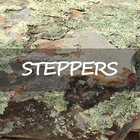 Steppers-CTA.jpg