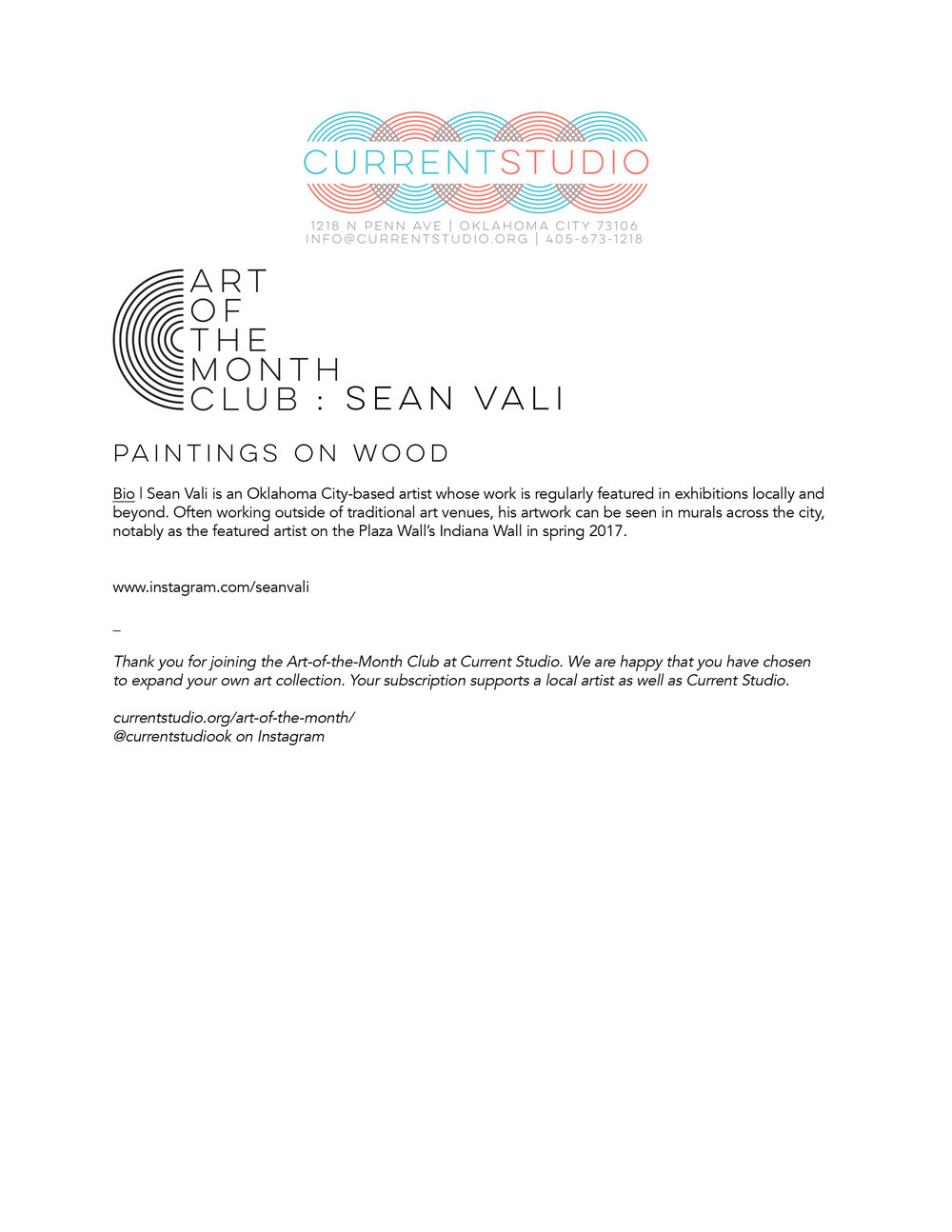 art of the month artist sheet - sean vali.jpg