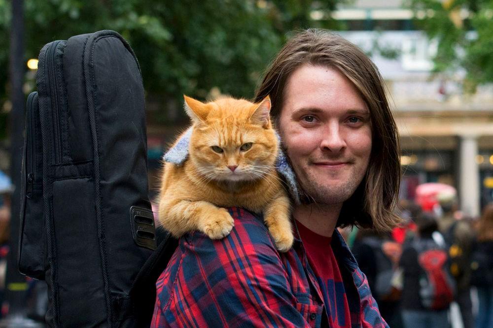 james-bowen-street-cat-bob.jpg