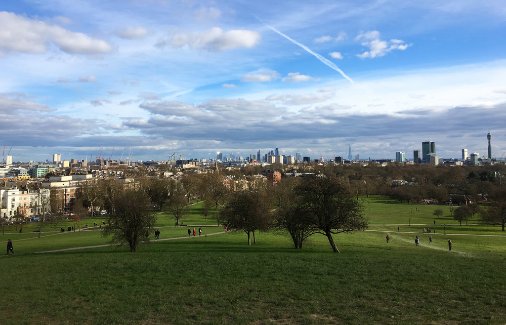 Primrose Hill  (own photo)