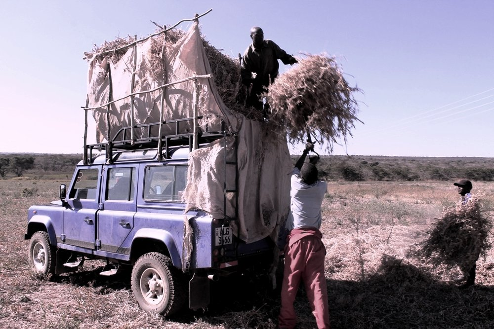 More Than Just A Family Car……Our Landrover Being Used Here To Collect Compost Materials For Our Agriculture Programs