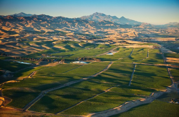 """NZ's Awatere Valley, south of the Wairau Valley, within the Marlborough zone. In the Maori language, Awatere means """"fast flowing stream"""", and the deep stony soils here are remnants of river paths."""
