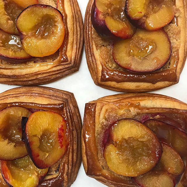 Plum brioche croissant from Santa Rosa. Come and check this out this week end. #organic #plum #farmermarket #sourdough #juicy #croissant #breeoshcafe #breeoshbakery #pierrelebaker