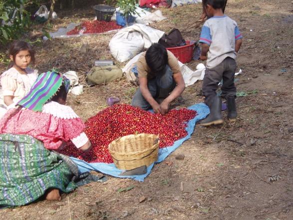 Guatemala 119.jpeg