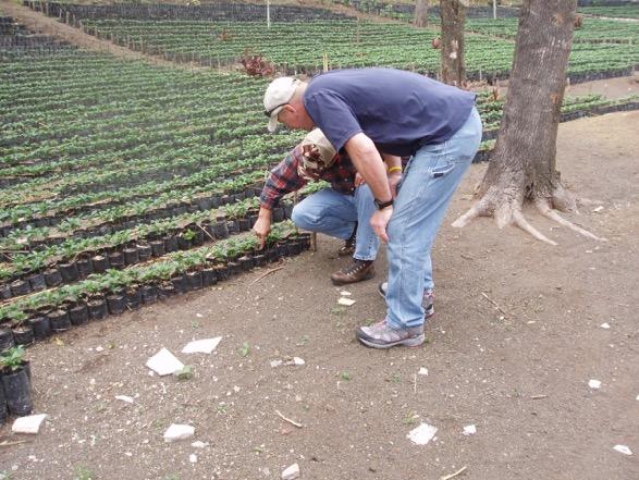 Guatemala 024.jpeg