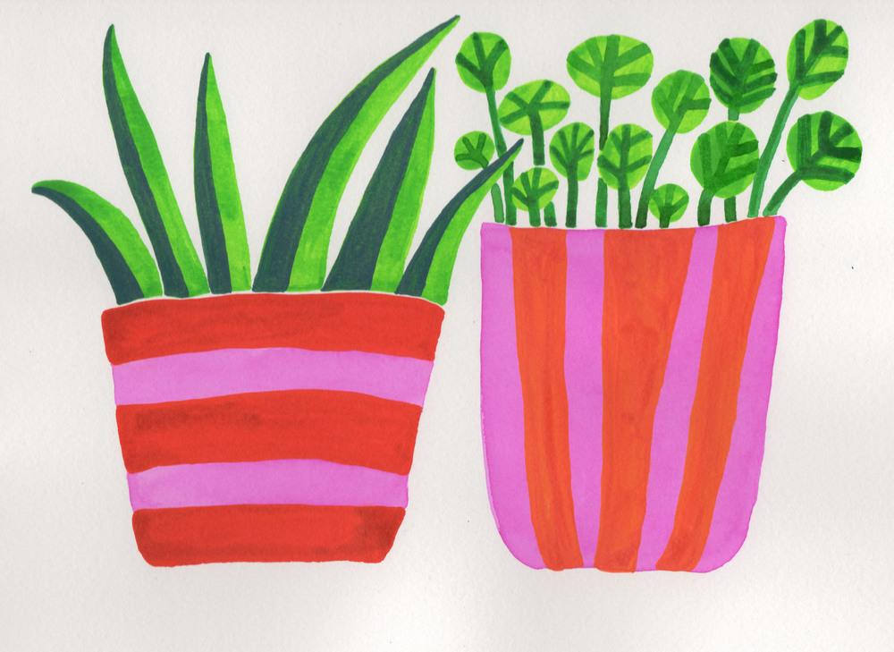 happy pots