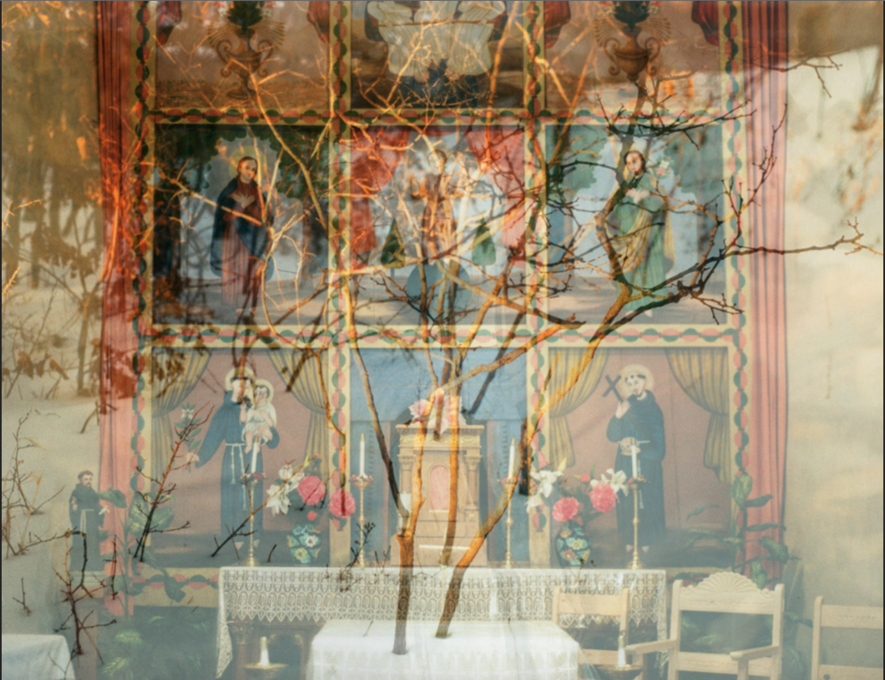 Growth from the Table, Monks in Blue, digital inkjet print