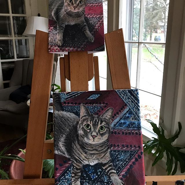 Work-in-progress #petportrait #petportraits #petportraitartist #killingstaddesign #catsofinstagram #hankypanky