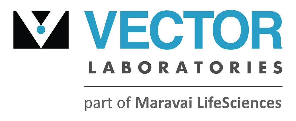 vector_laboratories_logo.jpg