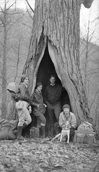 'Smoky Mountains Hiking Club rests at a large chestnut tree.' Image taken prior to the chestnut blights complete destruction the chestnut population in southern Appalachia: Image source   here