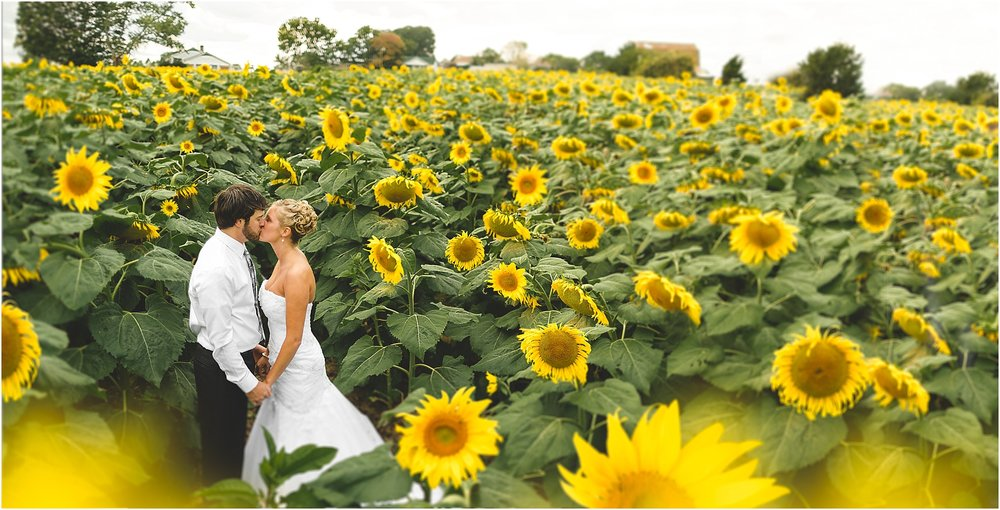sunflower-field-wedding.jpg