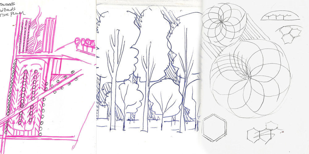 Farm Drawings.jpg