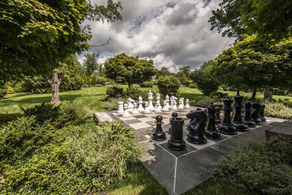 Edelstein Chess.jpg