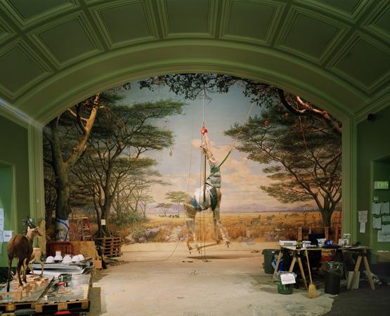 Richard Barnes - Foley Gallery