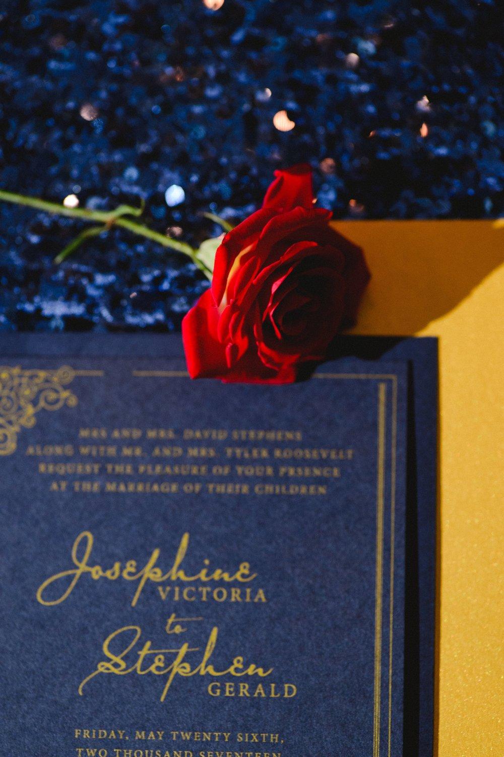 KatherineMurrayPhotography_StyledShoot_Wedding_BeautyAndTheBeast_ATaleAsOldAsTime_theAllure_LaPorteIndiana00249-min.jpg