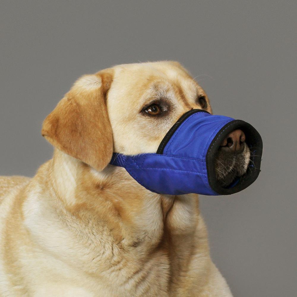 <h3>KVP Soft Muzzle™</h3>