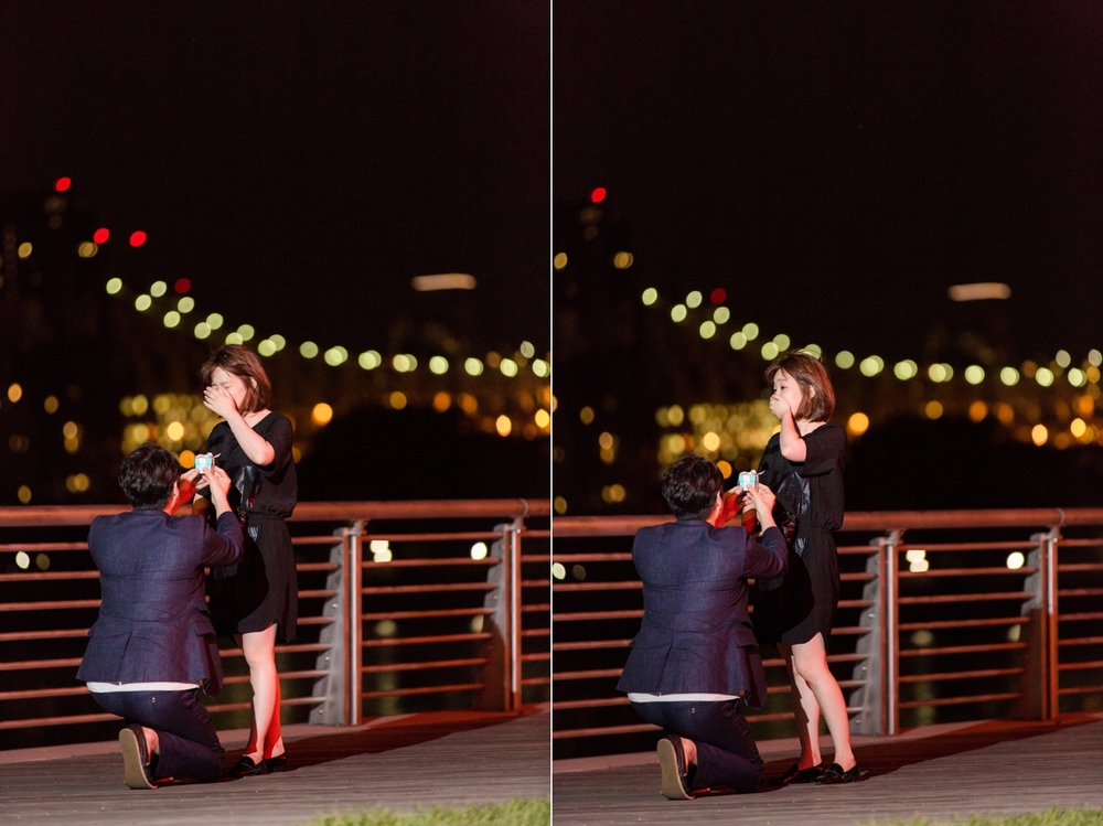 long-island-city-marriage-proposal_0002.jpg