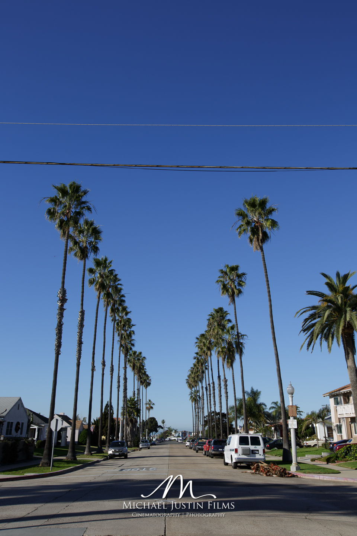 Coast-Highway-1-San-Diego-to-San-Francisco-6.jpg