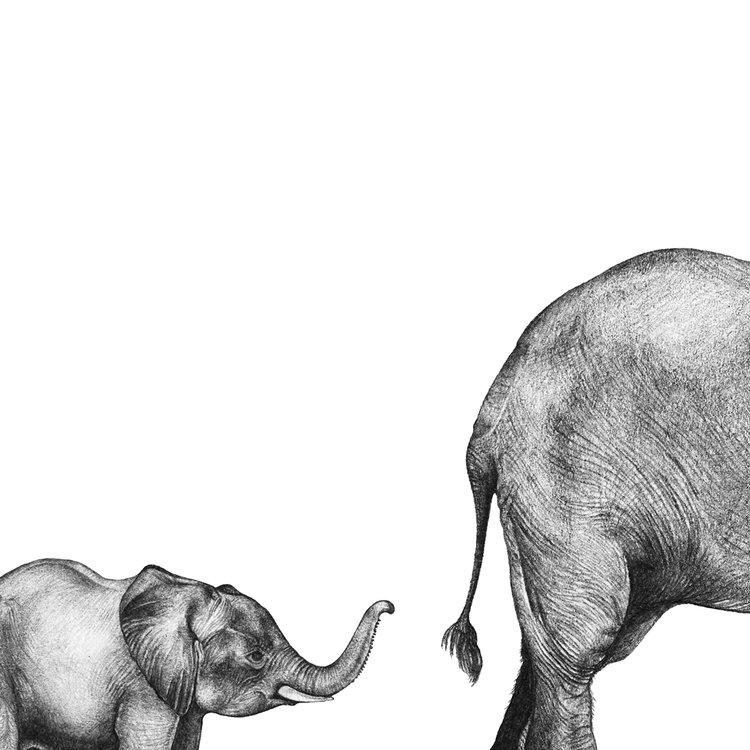 FRAMED MUMMY AND BABY ELEPHANT PRINT — LALE GURALP