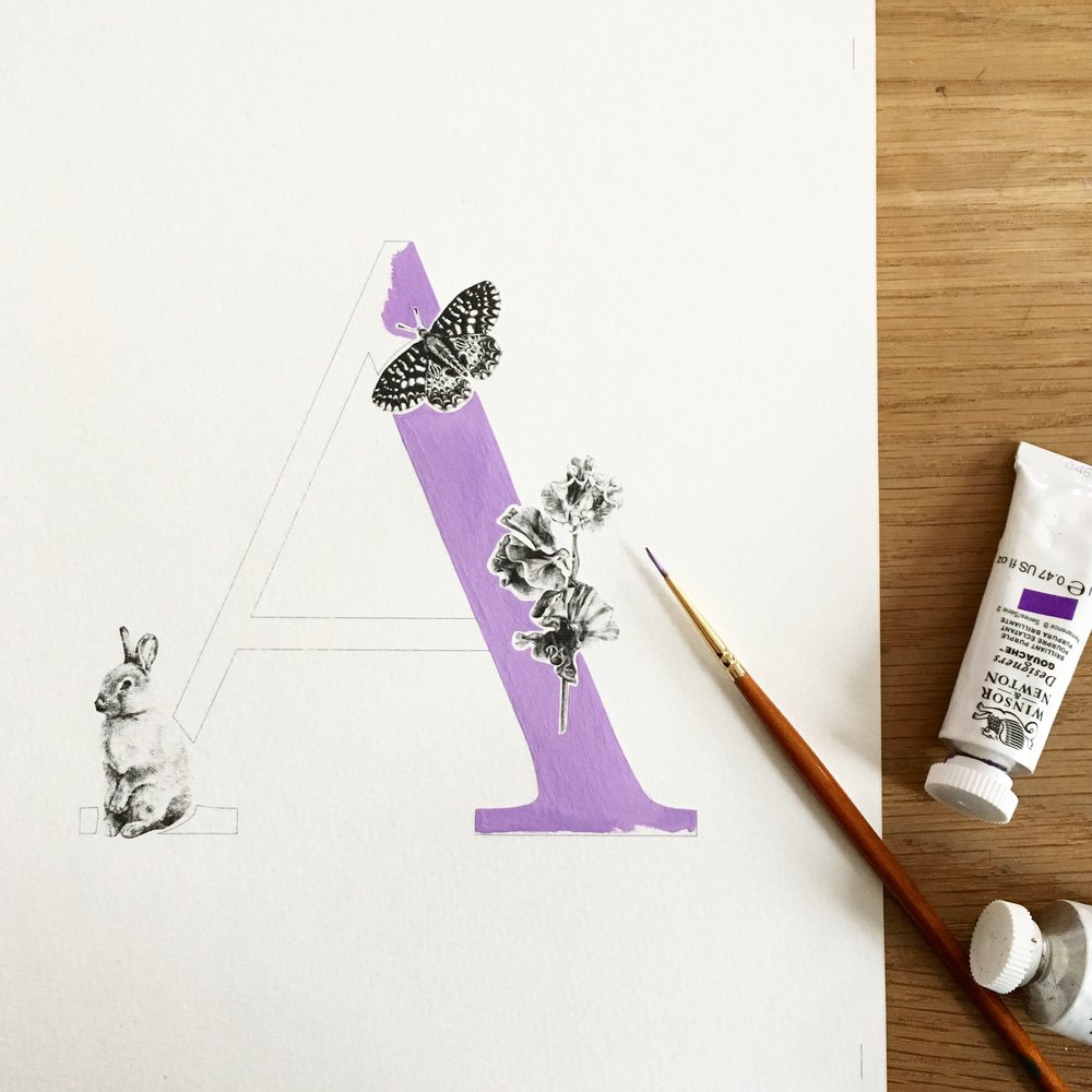 Violet Purple.JPG