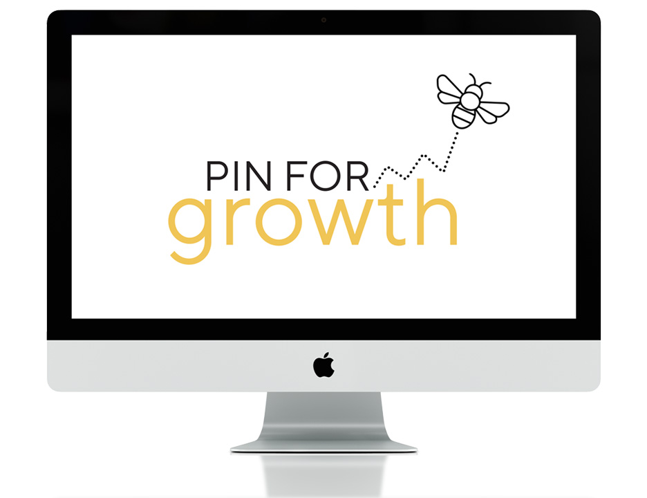 PinForGrowth_Presentation_Small.jpg