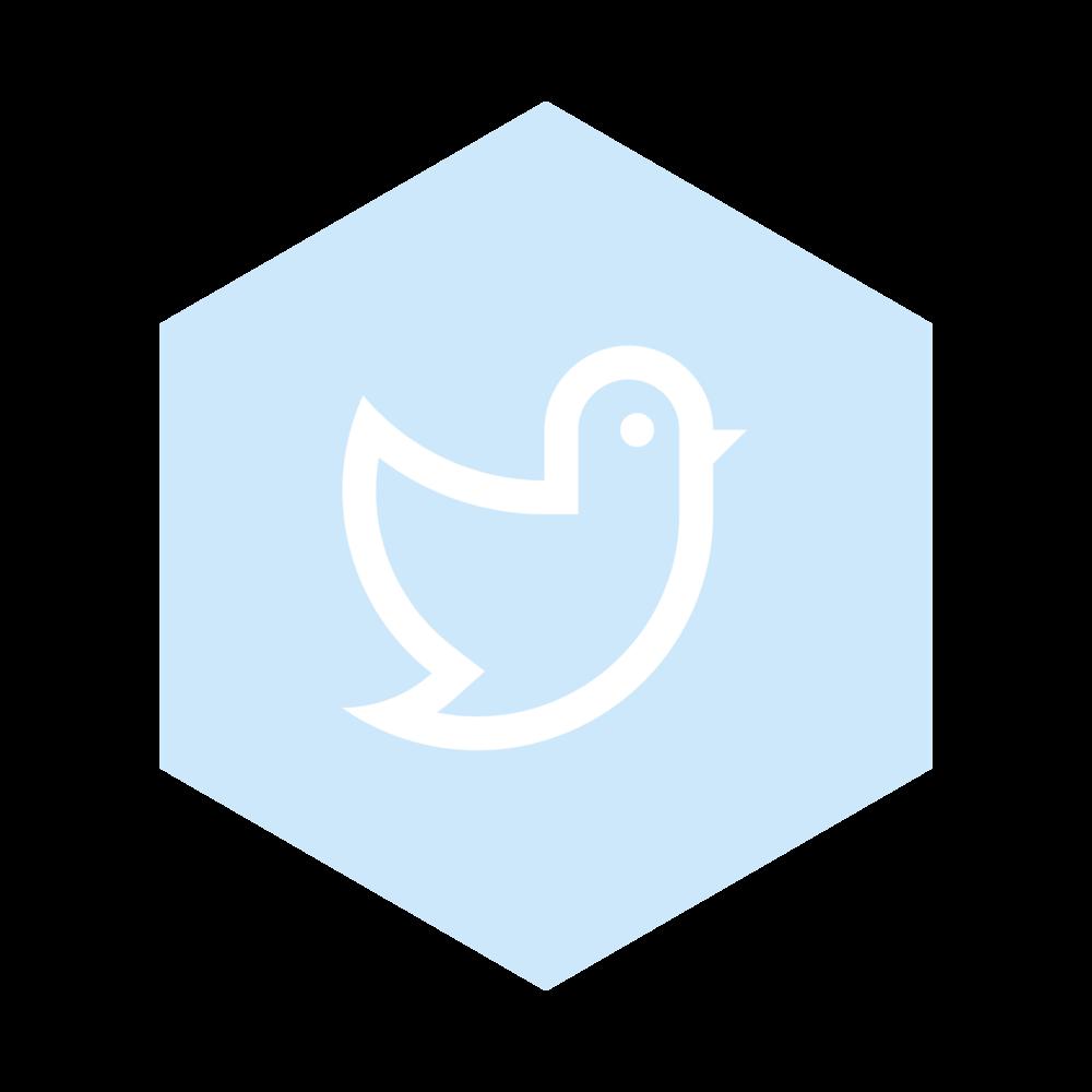 Social IconsBC-01.png
