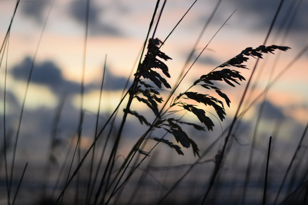 Clearwater Beach -