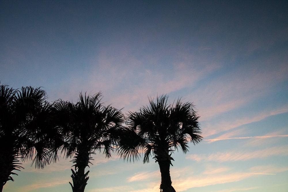 Flagler Beach -