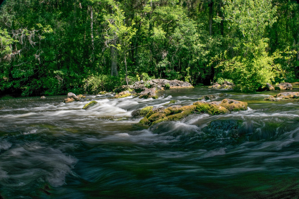 Hillsborough River State Park -