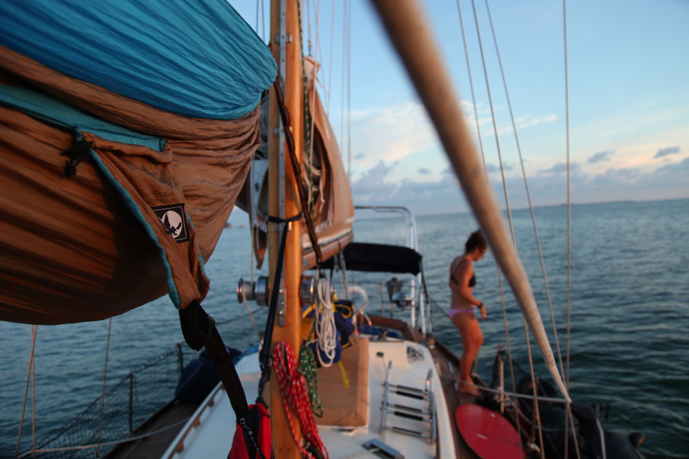 Sailing in the Bay -