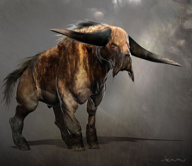 oxen_1.jpg