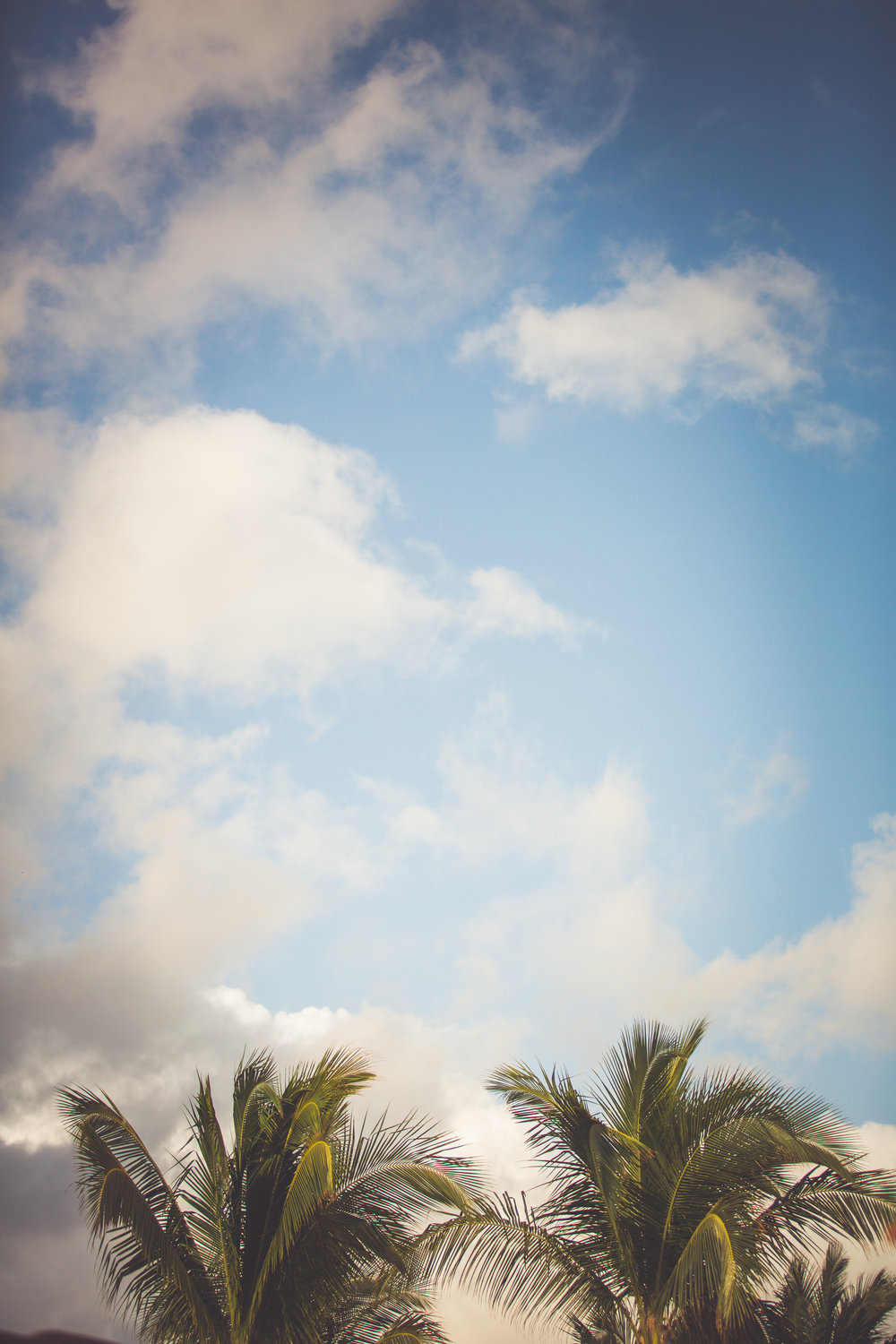 tropical destination wedding photographer