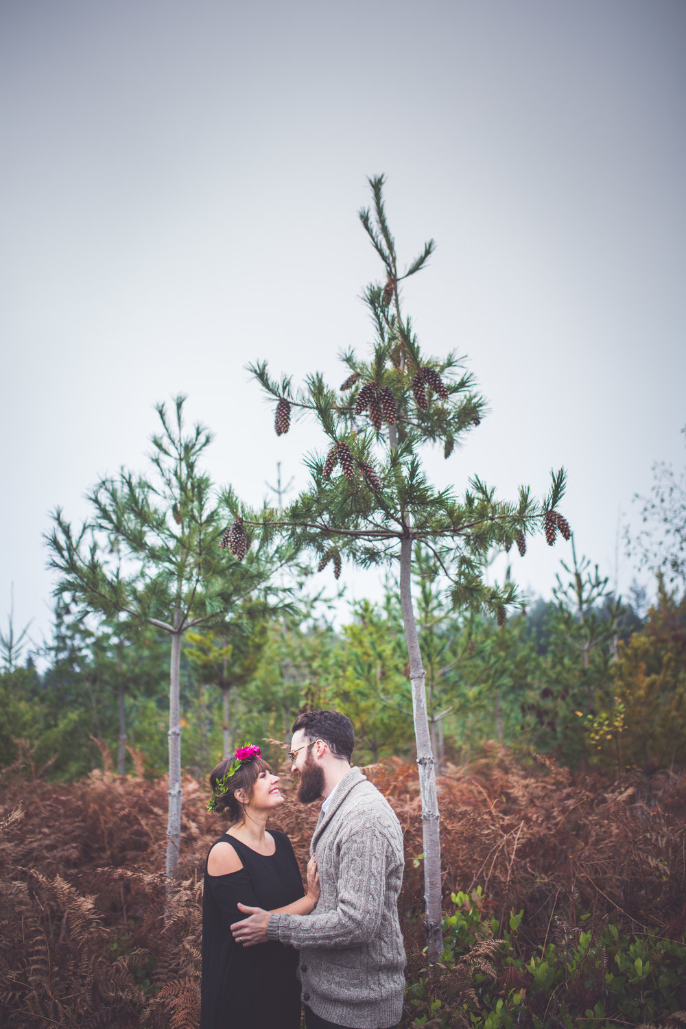 romantic parksville bc engagement photographers