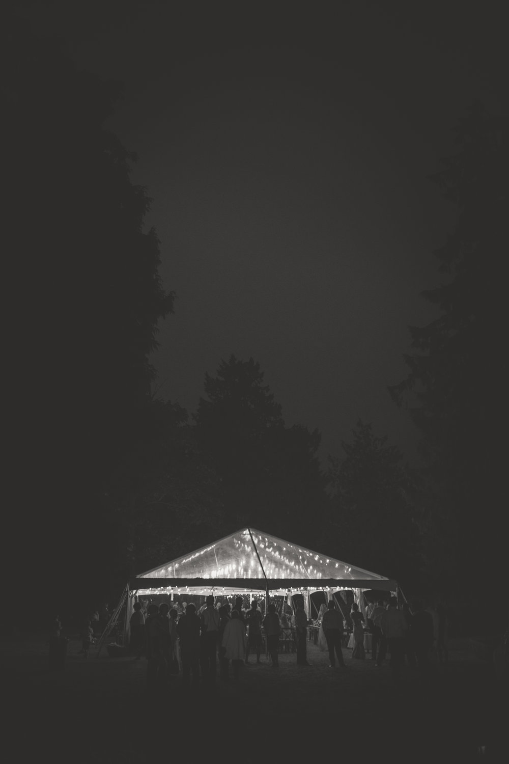 twinkle lights lit up this clear tent at wedding reception party