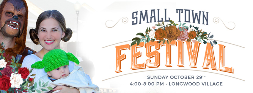 Small-Town-Festival-(Facebook-Cover).jpg