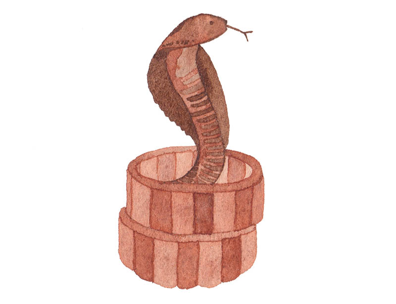 miss yasemin watercolour painting of snake in basket