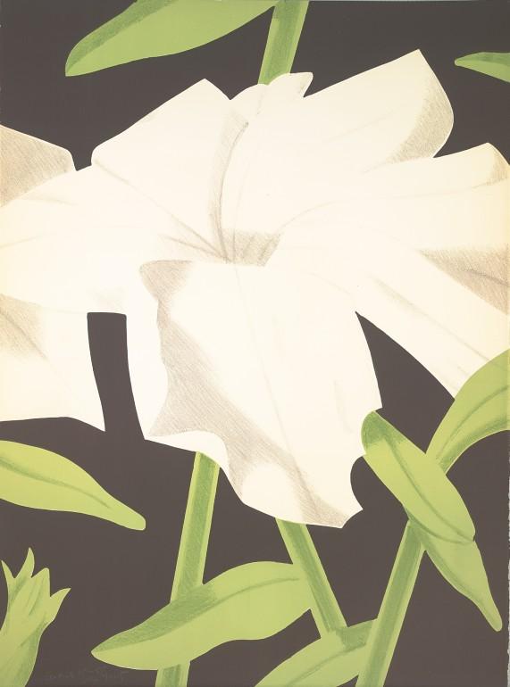 Alex Katz | White Petunia, 1969