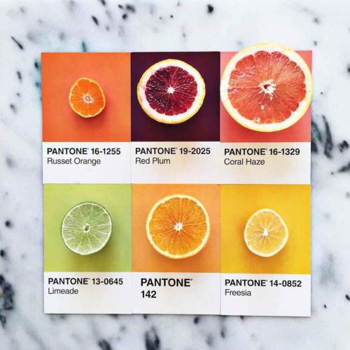 Color is inspired by nature