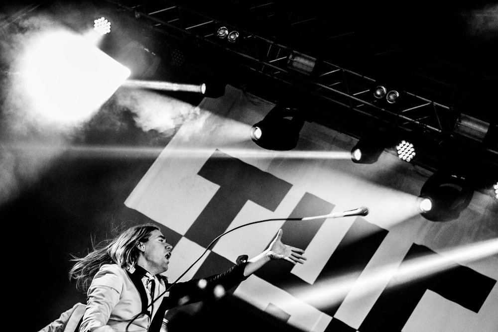 The Hives #14.jpg
