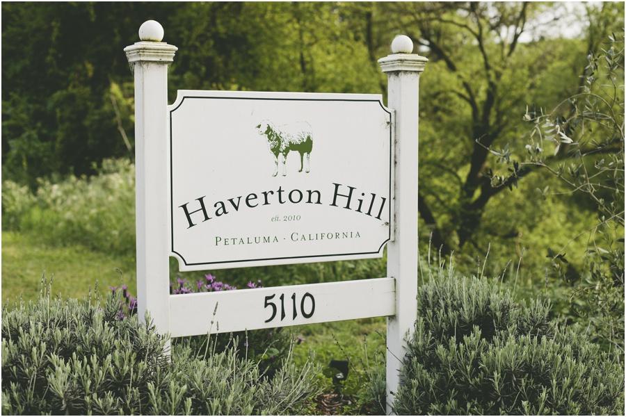 Haverton Hill Creamery | asavvylifestyle.com
