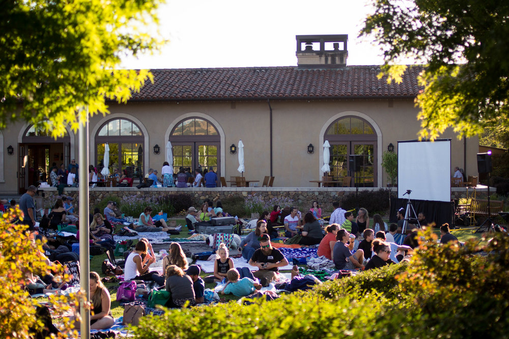 Stars Under the Stars Outdoor Film Festival