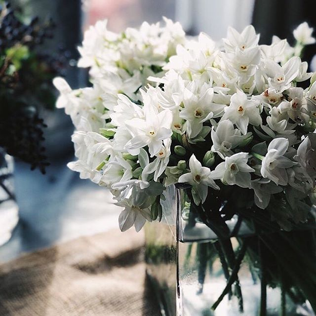 Gorgeous winter whites @tesoroflowers most recent floral design workshop! Check out the blog for our feature on Paul and the Tesoro team, and info on more upcoming workshops! Link in bio. 📸: @portraitstothepeople