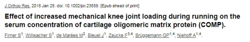 Cartilage 1.png